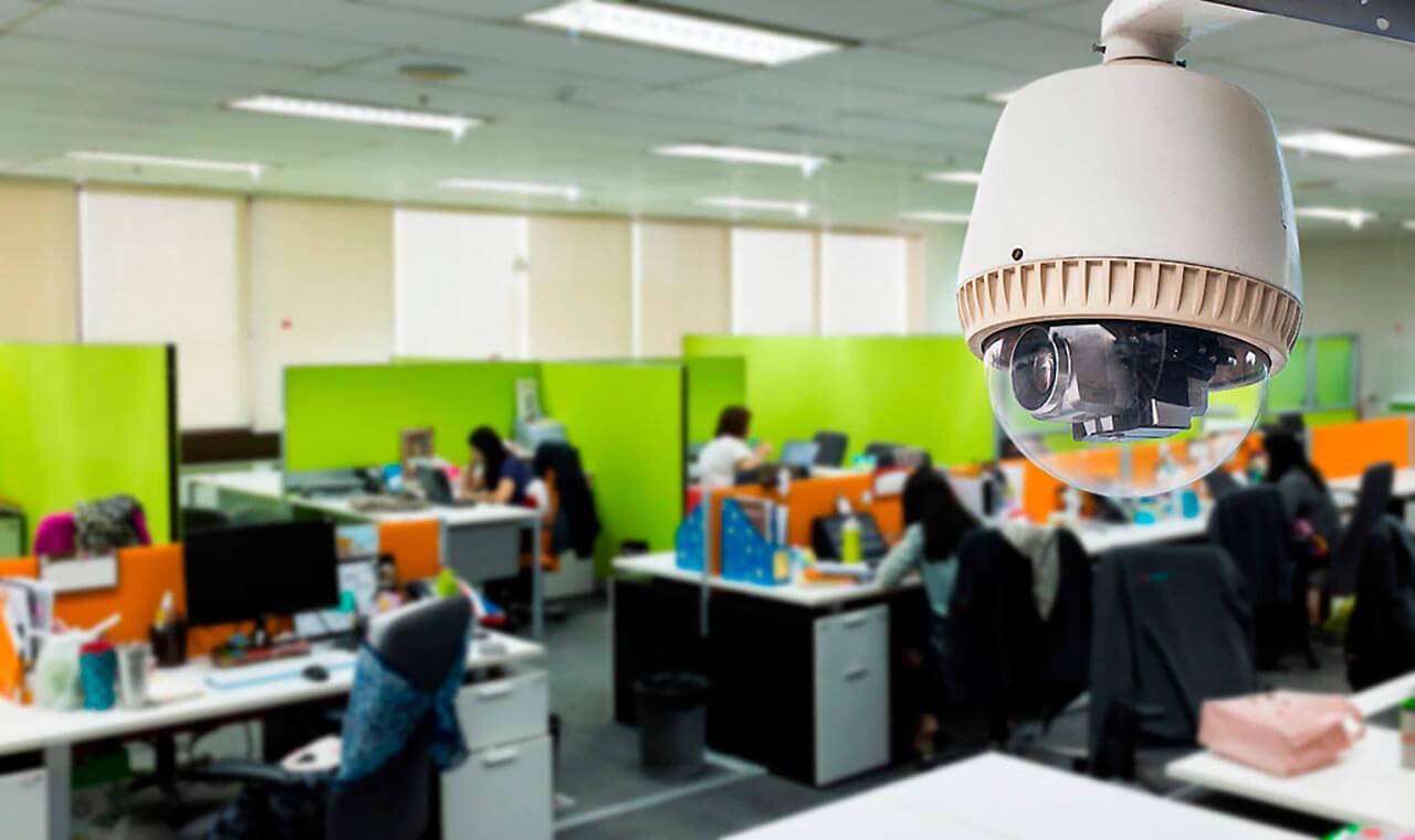 Безопасность офиса: что должен сделать руководитель